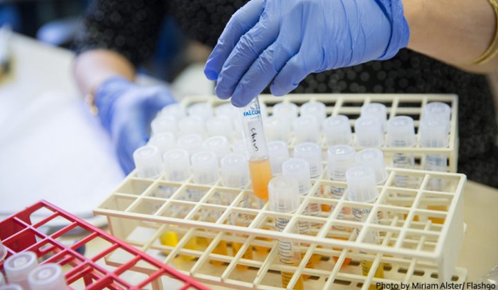 Conocimientos, recursos científicos y médicos de la Universidad Hebrea para combatir el coronavirus