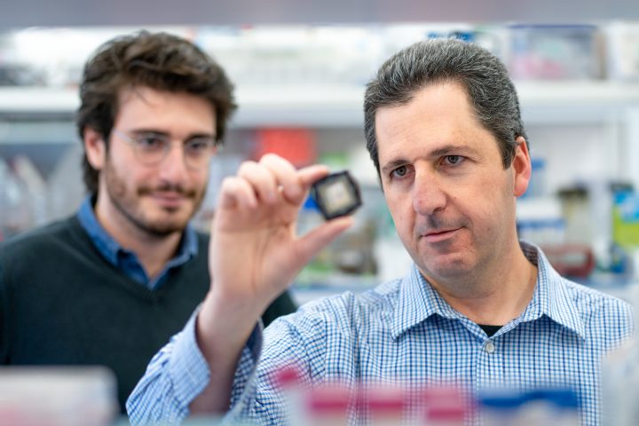 ¿Puede un chip reemplazar las pruebas con animales?
