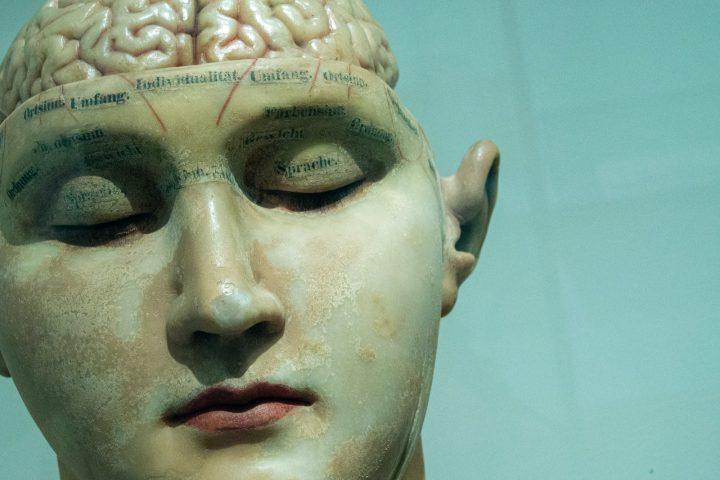 ¿Podríamos borrar la adicción de nuestro cerebro?