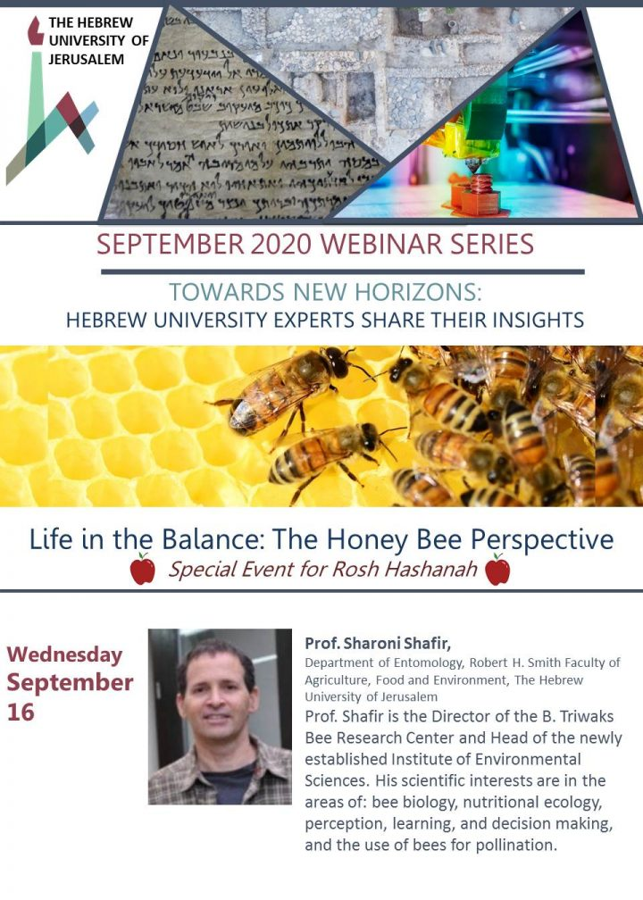 VIDEO: Life in the Balance: The Honey Bee Perspective