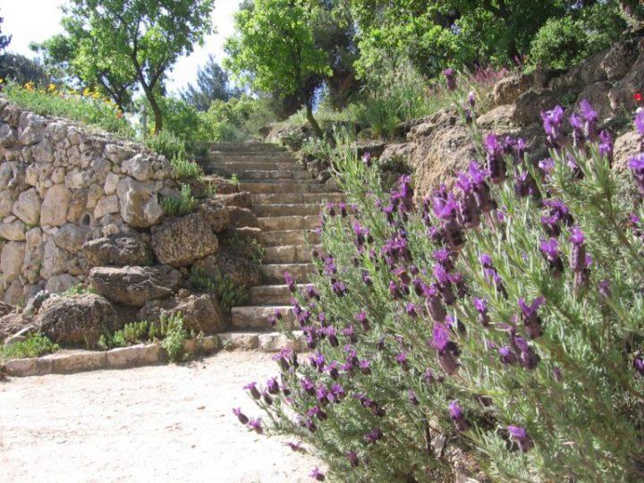 Guía de ISRAEL21c a los 5 jardines secretos de Jerusalem