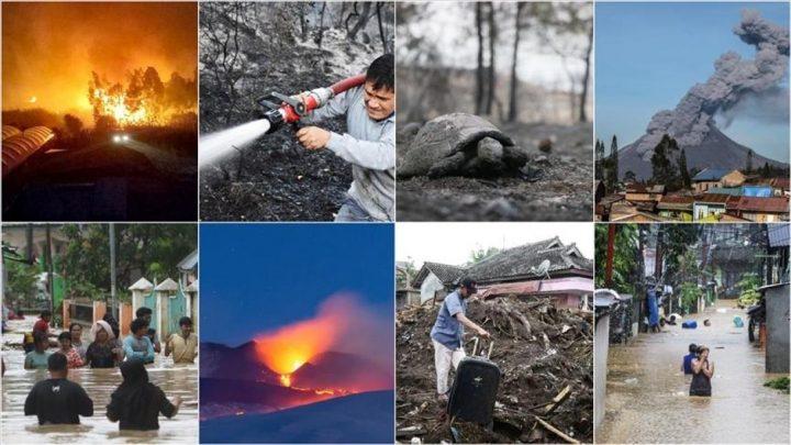 Los desastres naturales generan un aumento en la caridad y una disminución en el crimen