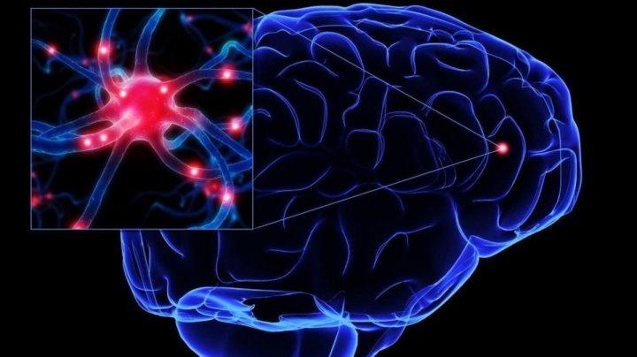 Las neuronas son mucho más inteligentes de lo que sabemos